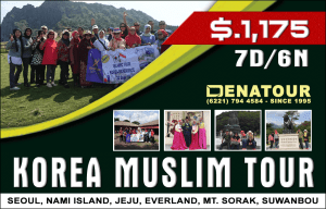 package korea muslim tour denatours