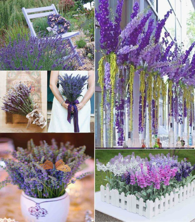 Lavender Wedding Decorations Luxury Lavender Wedding Decorations Icets