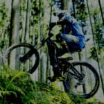 続)電動アシスト自転車 今後のパナソニックの戦略を読み取る!