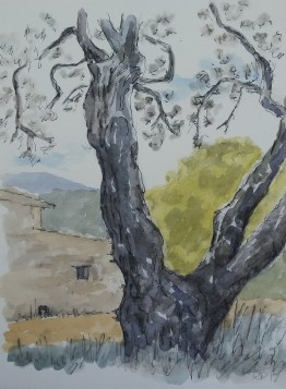 Akvarel 20x30 cm Privateje