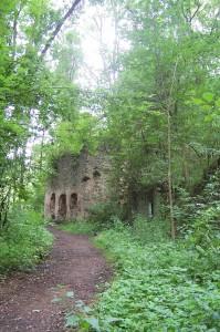 Ruina mlýna Šimákov - současný stav