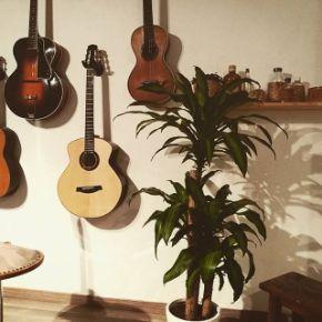 luthier a aix en provence guitares