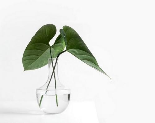 minimalizm, minimalist olmak, sadeleşme