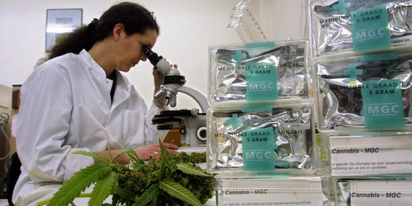 «Behov for mer forskning» Få pasienter i Norge får medisinsk cannabis på resept