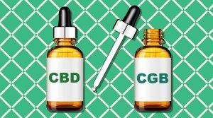 cbd cbg