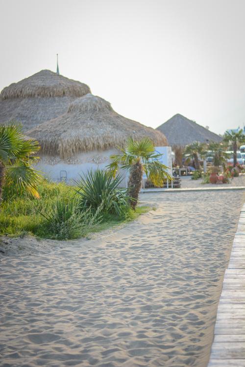 Beach Oasis