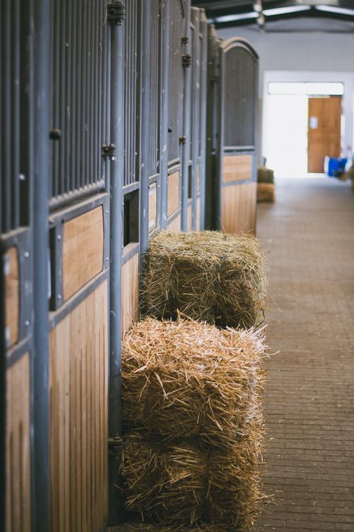 Trakietz Farm