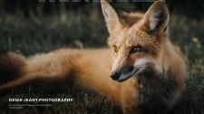 Site photo du photographe Denis JEANT