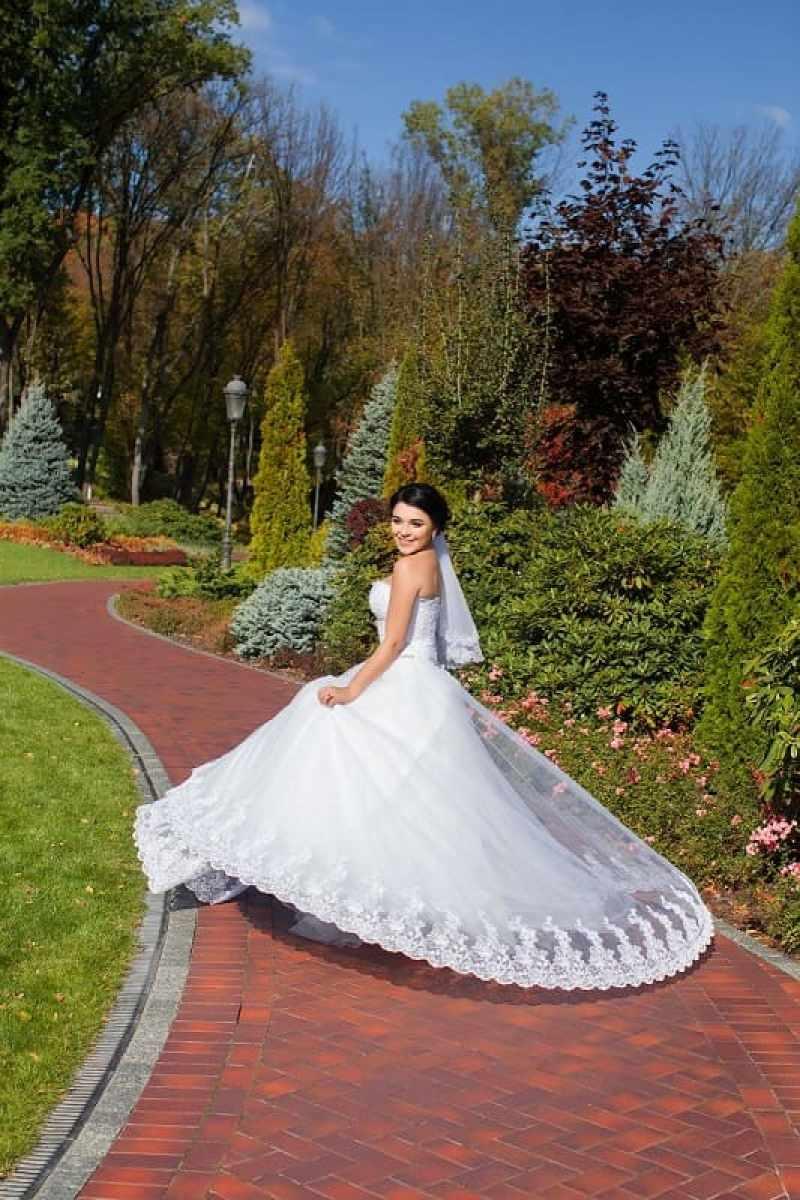 Ведущий и фотограф на свадьбу
