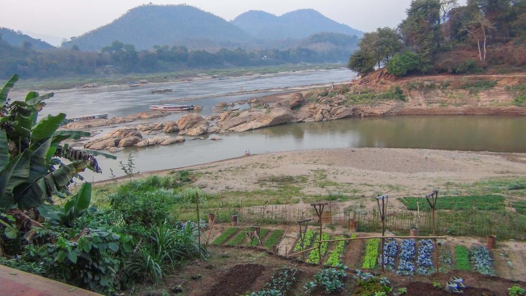 A garden plot near the river.