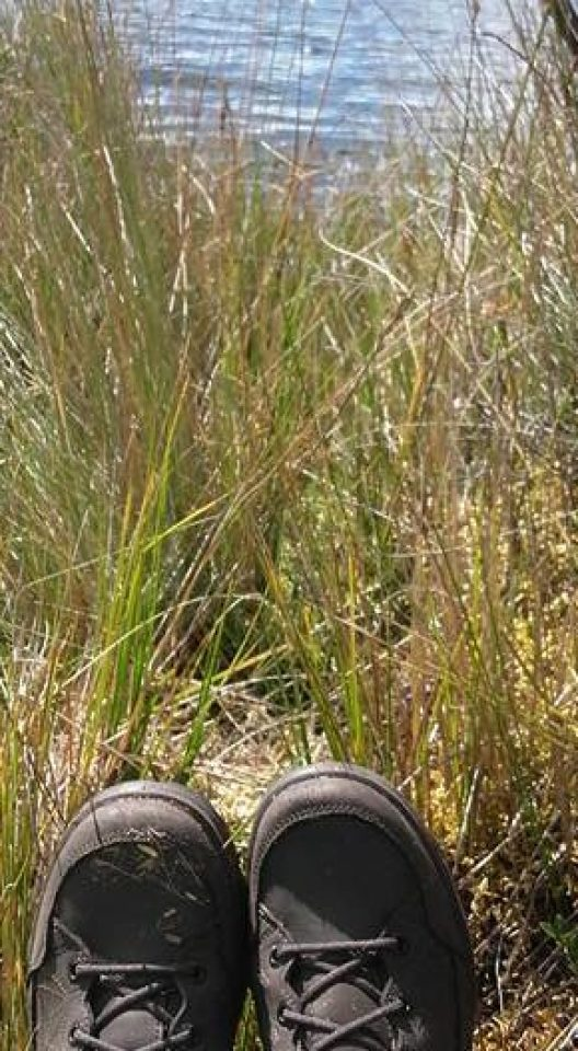 trekking, shoes, laguna