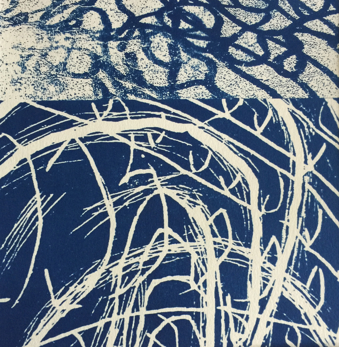 Dividing the Waters - Cyanotype - 8x8
