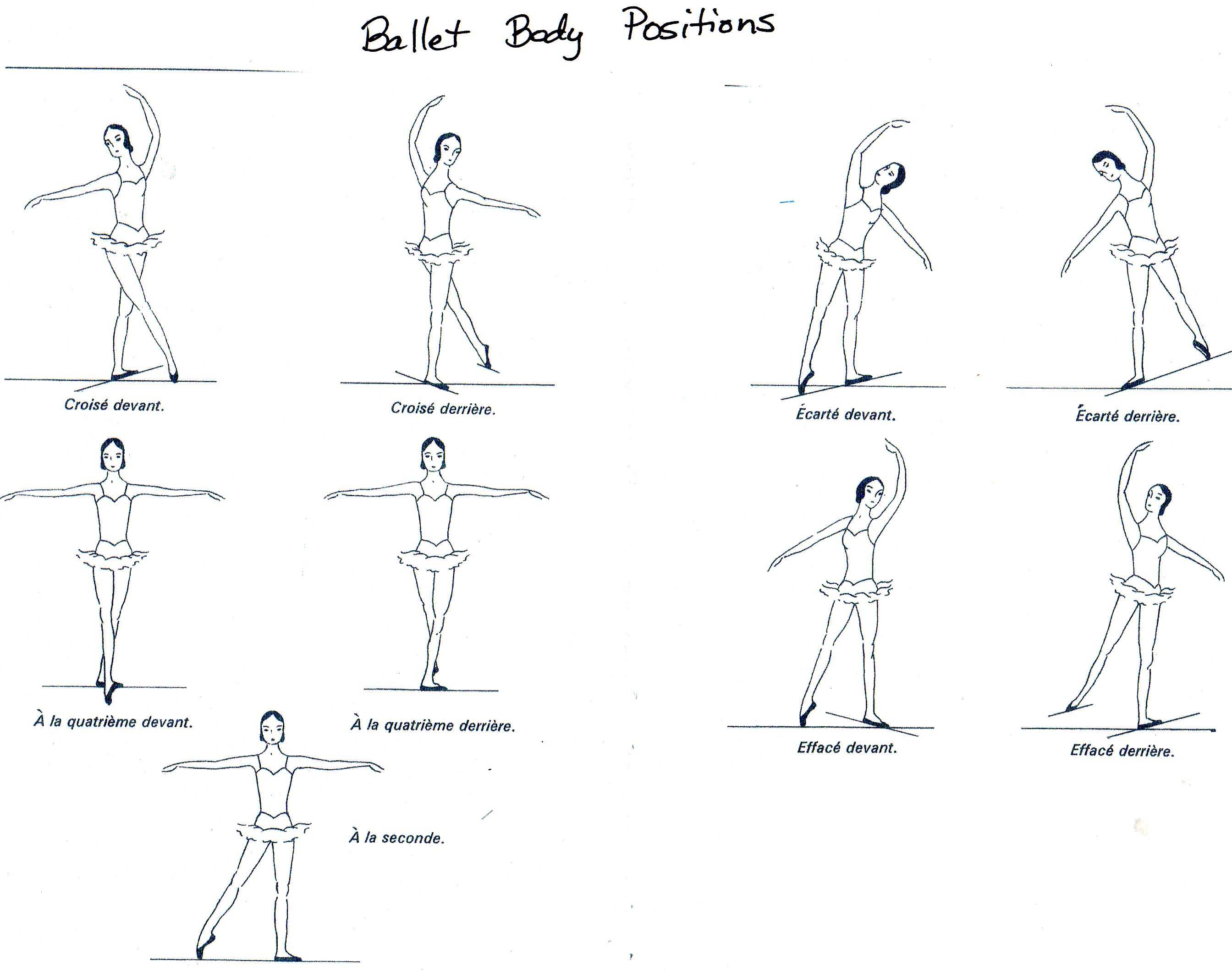 Ballet Body Positions Labeled
