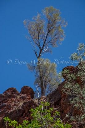 Karijini, Western Australia