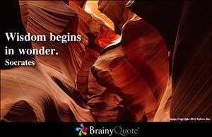 wisdom wonder