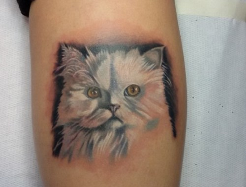 Tatuaggio Gatto