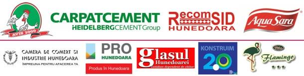 logo-uri pro hd fabricat in hunedoara