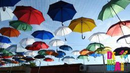 umbrelute colorate hunedoara 8