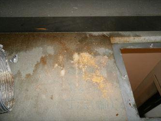 ユニットバス天井裏の湿気