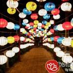 Tết trung thu-Khám phá con đường đèn lồng dài nhất Việt Nam