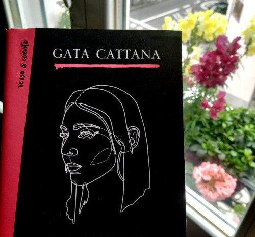 La escala de Mohs / Gata Cattana