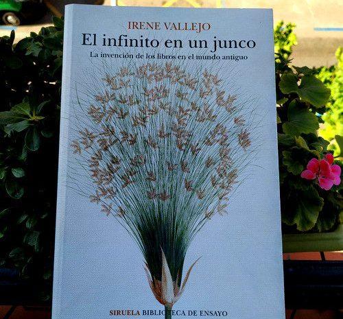 El infinito en un junco / Irene Vallejo