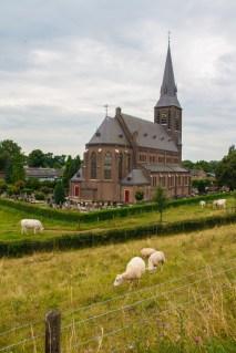 sheep-and-church