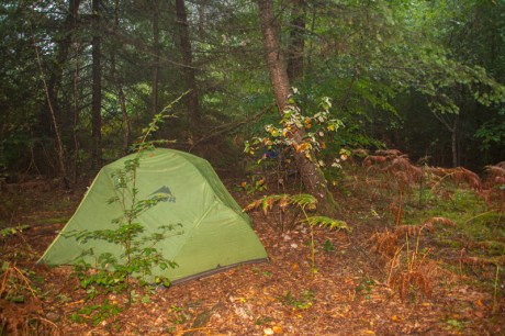 another-camp-spot-in-the-woods