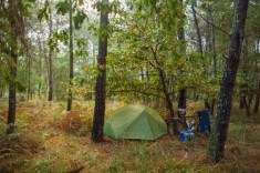 yes-a-camp-spot-in-the-woods