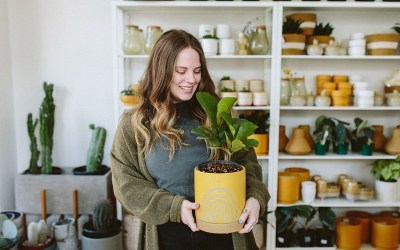 Houseplant Care Tips for Vacation