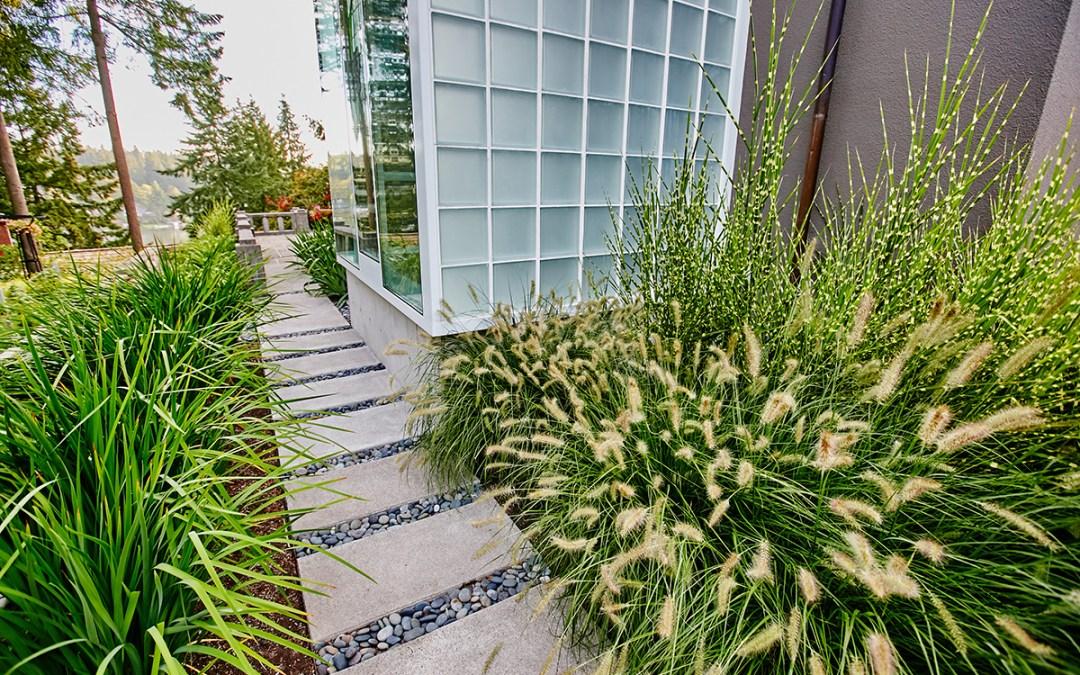 Ornamental Grasses & Late-Season Bloomers