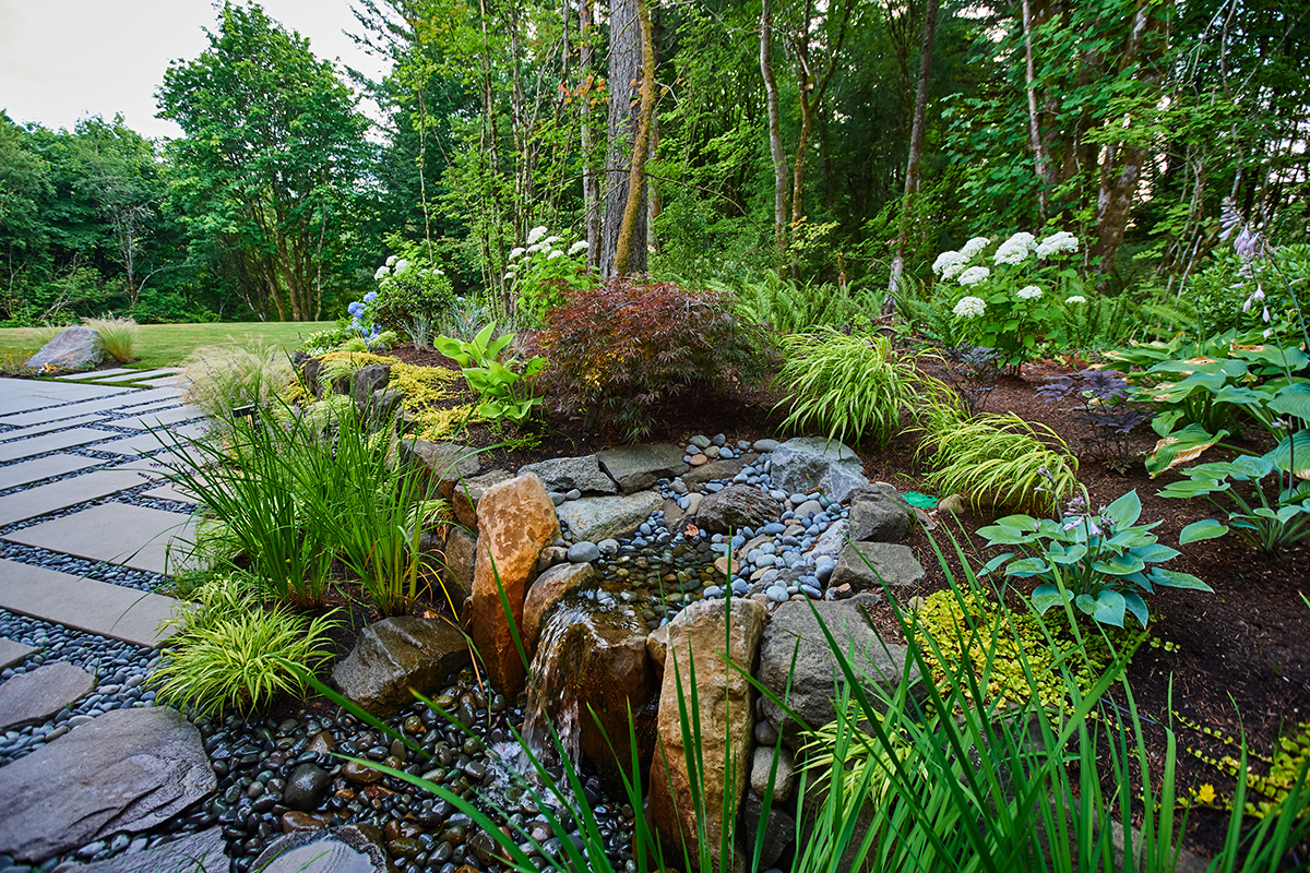 Landscape Plants for Shade