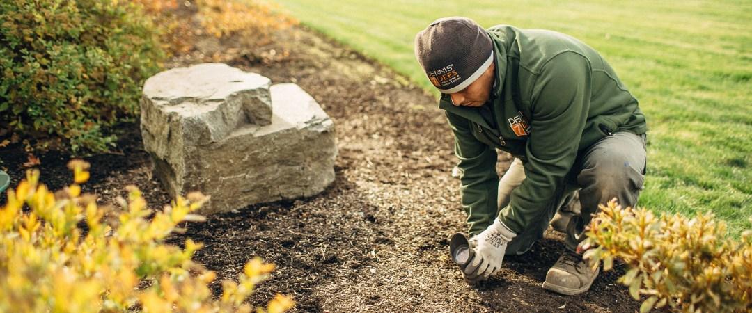 Dennis' 7 Dees Sustainability Maintenance