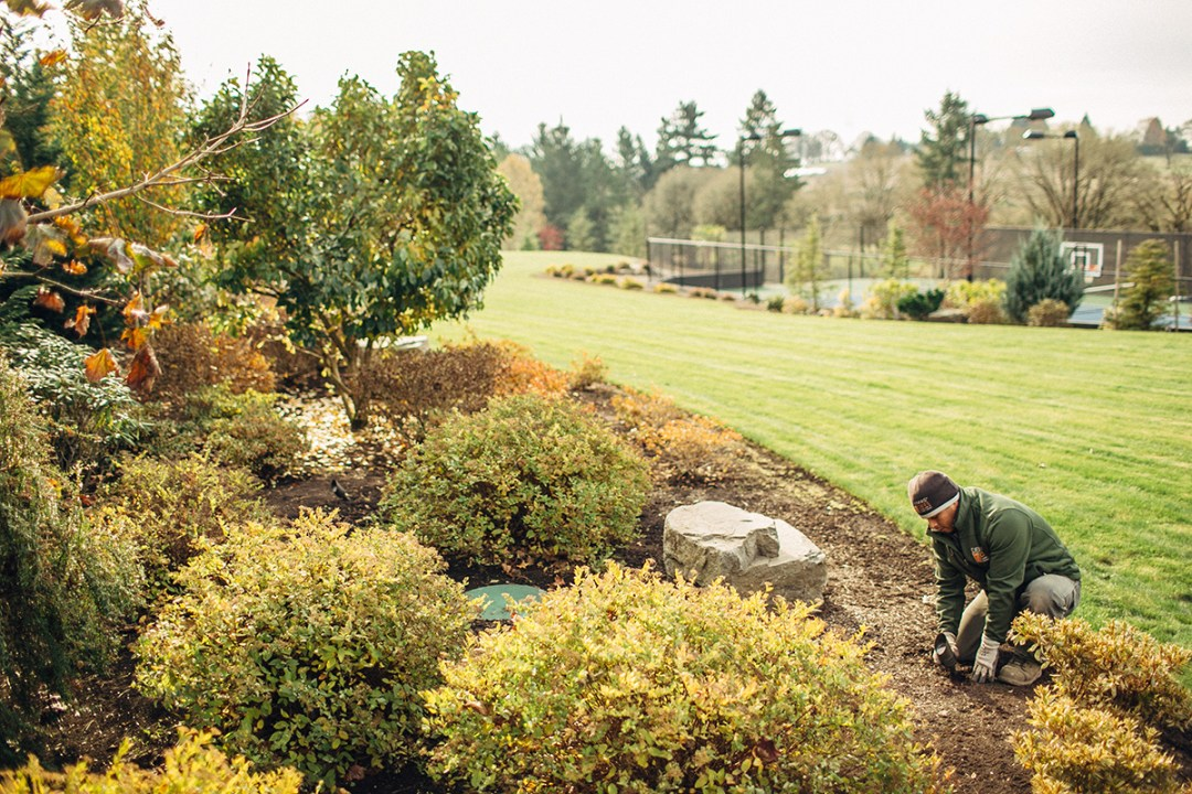 landscape worker fixing the landscape lighting
