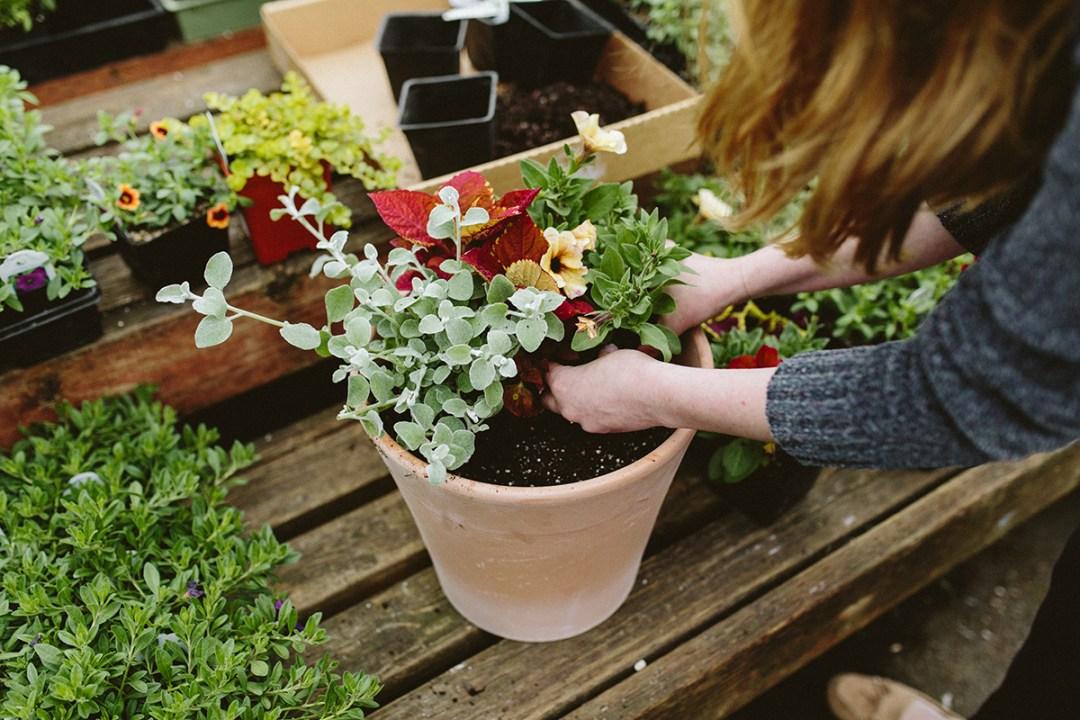 Creating a flower planter