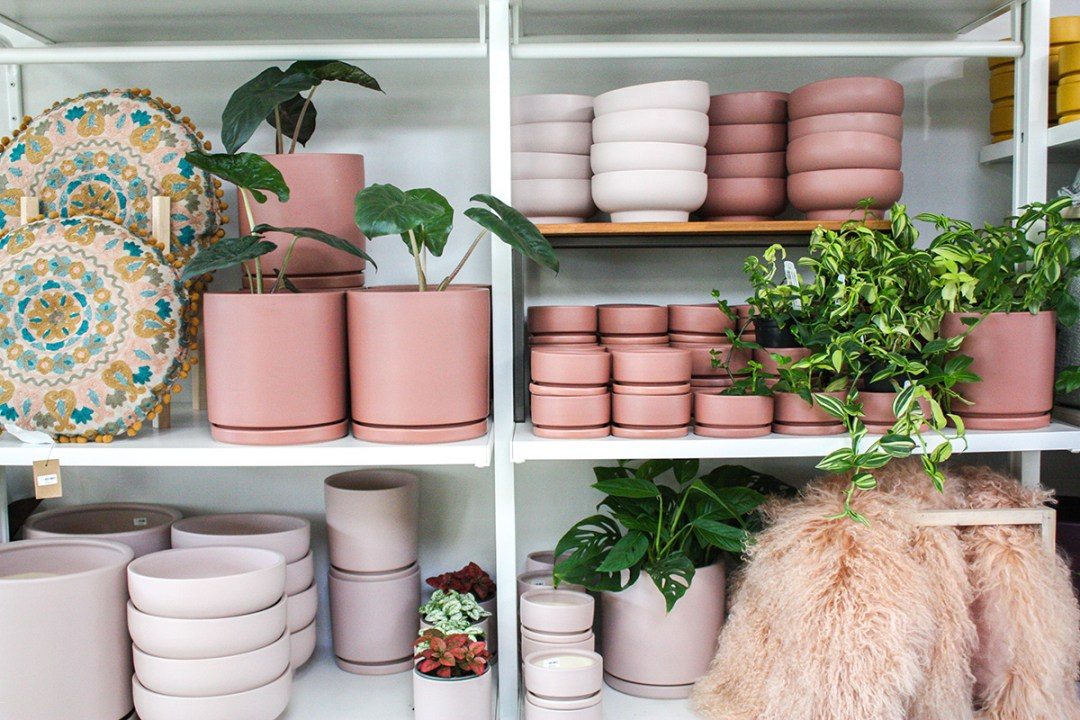 Pink plant pots and accessories