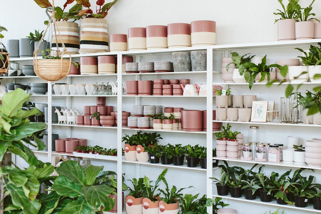 Pink Pots and Accessories