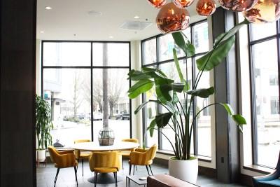photo of apartment lobby plant installation