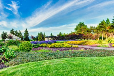 residential landscaping home view