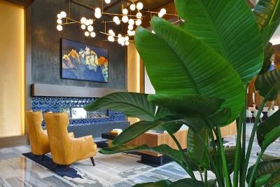 Urban Plantscapes Hospitality Plants