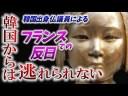 【韓国崩壊】韓国出身仏議員による『フランスでの反日プロパガンダ』についての画像