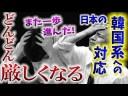 【日本の韓国系への対応】警察も手だしができなかった『歴史的特権』の画像