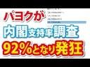 【インチキ】パヨク「世論調査は信用できないので、俺がやる!」92%となり発狂!の画像