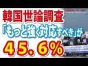 【韓国世論調査】徴用工・レーダー照射に45.6%が「もっと強く対応すべき」の画像