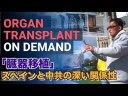 【コロナウイルス】スペイン、中国を非難出来ない理由『臓器移植問題』【法輪功】の画像
