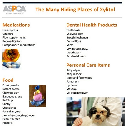 ASPCA Xylitol Poster
