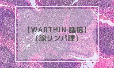 Warthin 腫瘍(腺リンパ腫)