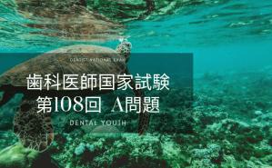 第108回 歯科医師国家試験:A問題