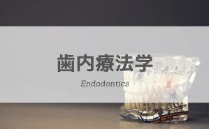 歯内療法学