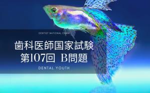 第107回 歯科医師国家試験:B問題